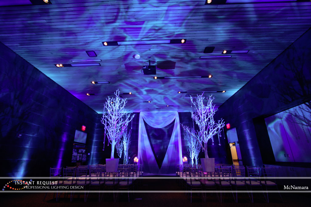 Wedding led uplighting at McNamara 13